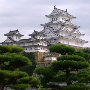 Himeji Castle Japan Hineji Trees HDR Wallpaper